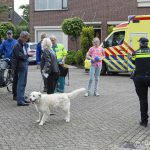 https://www.buurtpreventiehiambacht.nl/wp-content/uploads/2016/07/20160614-5023-WEB-150x150.jpg